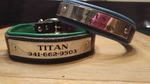Custom Padded Dog Collars