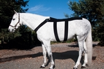 Ice Horse Back Blanket