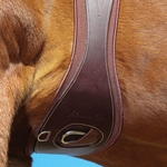 Professional's Choice SMx VenTECH Leather Girth