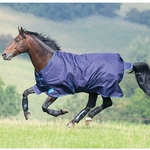 <Font color=Red> Closeout </Font color=Red> Shire's Tempest Plus 200g Rug