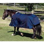<Font color=Red> Closeout </Font color=Red> Shires StormCheeta 200g Turnout Rug