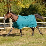 <Font color=Red> Closeout </Font color=Red> Tempest 100g Turn Out Blanket