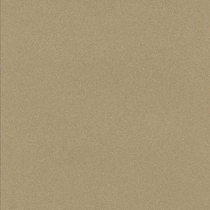 "American Olean Decorum Proper Taupe Polished 24"" x 24"""