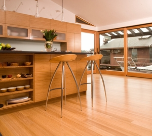 Bamboo Hardwoods Construkt Vertical Grain Carbonized