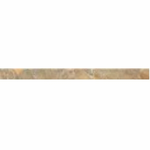 "Cerdomus Dome Gold Bullnose 2"" x 24"""