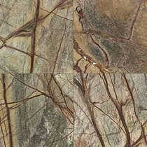 "Daltile Marble Rainforest Green Polished 12"" x 12"""
