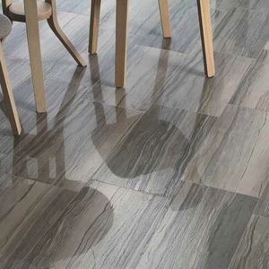 Emser Action Porcelain Tile Collection