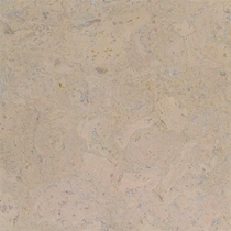"Globus Cork 12"" x 24"" Whitewashed"