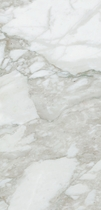"Happy Floors Calacatta Semi-Polished  12.6"" x 25.6"""