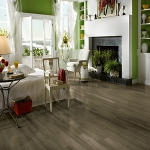 Armstrong Coastal Living Laminate Flooring Sale