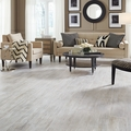 Mannington Restoration Nantucket Sand Dollar