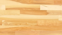 Mirage Admiration Natural UV Yellow Birch Traditional Engineered Semi-Gloss 3 5/16""