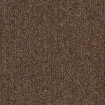 Mohawk Aladdin Defender 20 Hickory Carpet