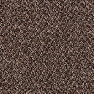 Mohawk Aladdin Virtual Cloves Carpet