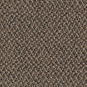 Mohawk Aladdin Virtual Landscape Carpet