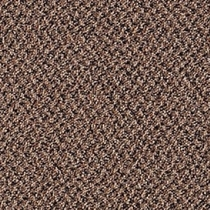 Mohawk Aladdin Virtual Spicey Carpet