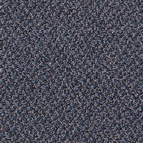 Mohawk Aladdin Virtual Whale Watch Carpet