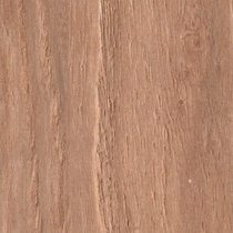 Mohawk Strong Step Toasted Chestnut