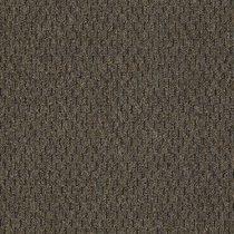 Patcraft Approach Structured Carpet