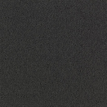 Patcraft Color Choice Black Carpet
