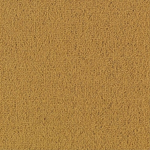 Patcraft Color Choice Brasserie Carpet