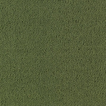 Patcraft Color Choice Cactus Carpet
