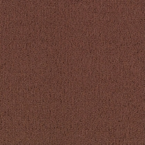 Patcraft Color Choice Chocolate Carpet