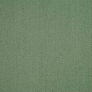 Patcraft Color Choice Foliage Carpet