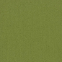 Patcraft Color Choice Green Apple Carpet