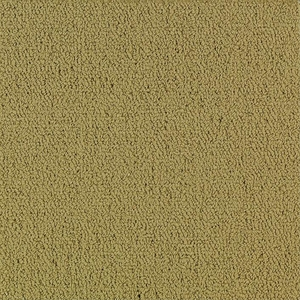 Patcraft Color Choice Herbal Carpet