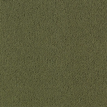 Patcraft Color Choice Ivy Carpet