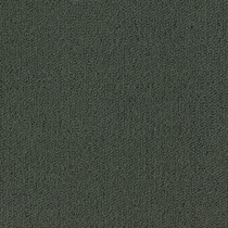 Patcraft Color Choice Lava Carpet