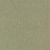 Patcraft Color Choice Light Taupe Carpet