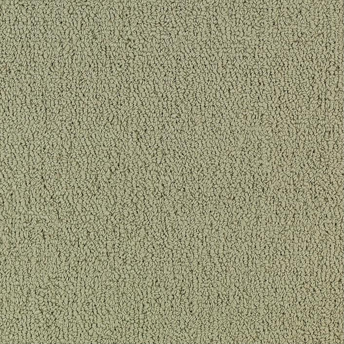 Patcraft color choice light taupe carpet i0203 00104 for Taupe color carpet