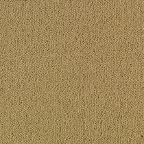 Patcraft Color Choice Pecan Carpet