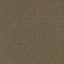 Patcraft Color Choice Portabella Carpet