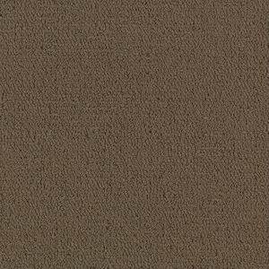Patcraft Color Choice Timber Carpet Tile