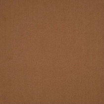 Patcraft Color Choice Tobacco Carpet