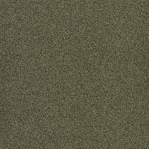 Patcraft Color Your World Color Aesthetics Carpet Tile