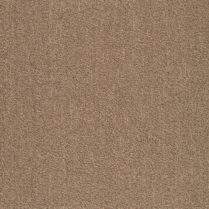 Patcraft Color Your World Color Guard Carpet Tile