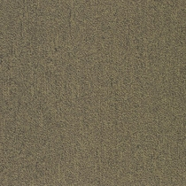 Patcraft Color Your World Color Mapping Carpet