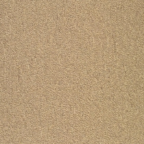 Patcraft Color Your World Color Theory Carpet