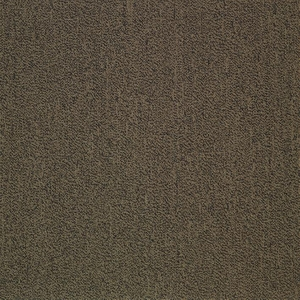 Patcraft Color Your World Color Trend Carpet