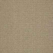 Patcraft Gait Amble Carpet