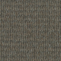 Patcraft Headlines II Genome Solved Carpet