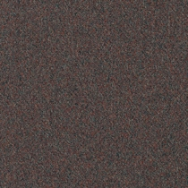 Patcraft Homeroom II 26 Boarding School Carpet