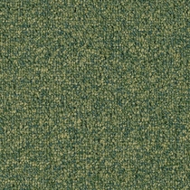 Patcraft Homeroom II 26 Continuing Education Carpet