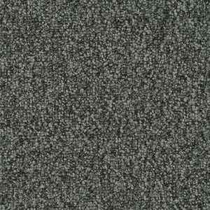 Patcraft Homeroom II 26 Cramming Carpet
