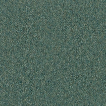 Patcraft Homeroom II 26 Gifted Program Carpet