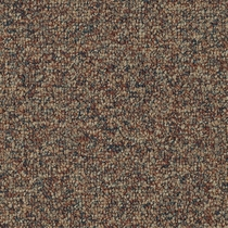 Patcraft Homeroom II 26 Gymnasium Carpet